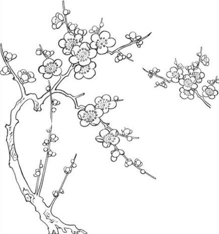 Mẫu tranh tô màu cho bé cành hoa đào ngày tết