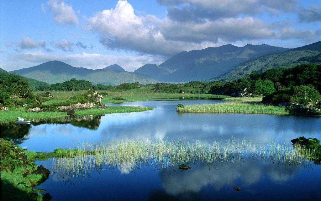 Bức tranh phong cảnh cho bạn một cảm giác muốn hòa mình vào thiên nhiên