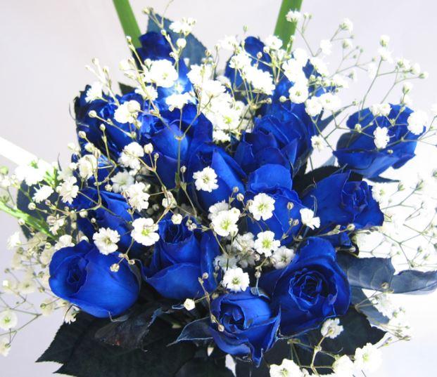 Ảnh lọ hoa hồng xanh đẹp nhất