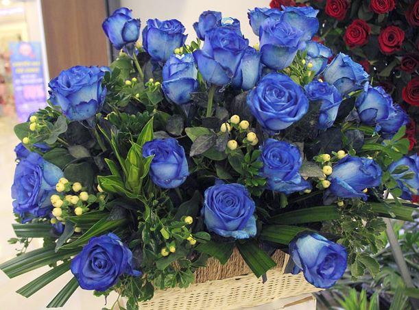 Ảnh giỏ hoa hồng xanh đẹp nhất