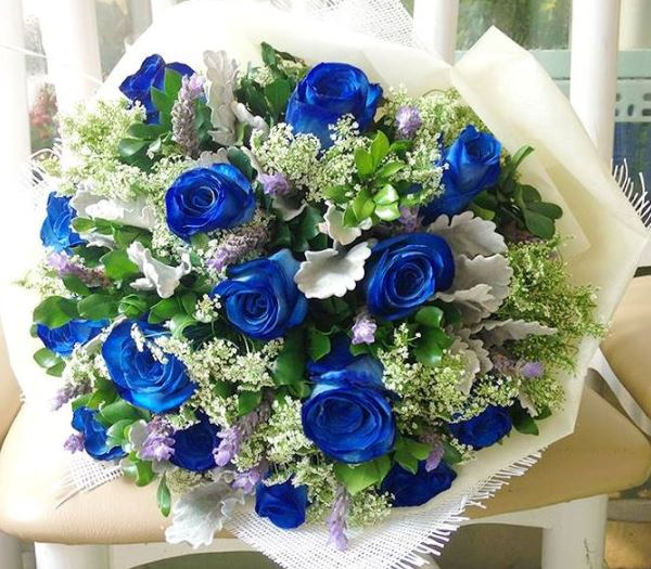 Bó hoa hồng xanh dương đẹp