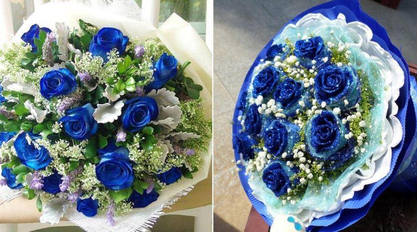 Hoa hồng xanh là gì? có thật không?